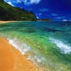 Количество мёртвых зон мирового океана резко возросло