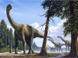 Учёные выявили возраст Арагозавра найденного в Испании