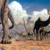 Учёные: динозавры своими газами нагревали планету Земля