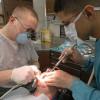 Созданы новые наноматериалы восстанавливающие зубы