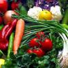 Новая технология позволяет обнаруживать 0,1 процент загрязнения ГМО сельскохозяйственных культур и продуктов питания