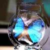 Ученые создали самый тонкий экран из мыльного пузыря