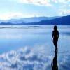 Ученым удалось раскрыть секрет – как ходить по воде