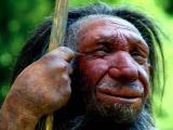 Неандертальцы использовали лекарственные растения для самолечения