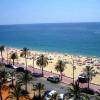 Лучшие пляжи Испании пострадали от австралийских медуз