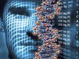 Человек – результат генетической ошибки