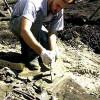 В Приморье обнаружено крупное захоронение чжурчженей