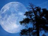 Ледяная Луна – На луне больше воды, чем предполагалось ранее