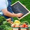 Ученые США испытали органические продукты