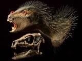 В Африке найдены останки маленького динозавра, похожего на вампира