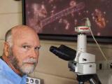 Генетик Крейг Вентер – Биологическую информацию возможно оцифровать