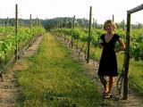 Микробы способны изменить вкус вина