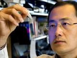 Ученые создают лекарство для разрушения стволовых клеток рака
