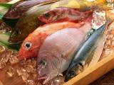Исследователи открыли природный белок в рыбе, который подавляет процесс распространения раковых клеток простаты