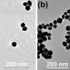 Ученым удалось увидеть самосборку наночастиц в более крупные структуры