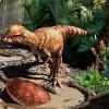 В Канаде обнаружили останки бодающегося динозавра