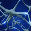 Новая технология может способствовать заживлению поврежденных нервов