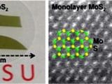 Ученые разработали методику нанесения одноатомных слоев