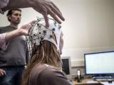 Ученые: клетки человеческого мозга способны быстро восстанавливаться