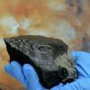 Метеорит с Марса содержит элементы для зарождения жизни