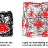 Нейробиологи изучили координатные нейроны человека
