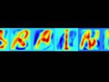 Ученые изучают мозг людей для идентификации букв