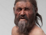 Ученые:Знаменитый Йети имеет 19-ть живых родственников