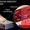 Ученые создали метод точного и быстрого выявления малярии