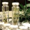 Во Франции впервые разрешили лекарство из марихуаны