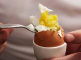 Ученые: Куриные яйца могут улучшить память