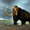 Упавший метеорит – не причина вымирания мамонтов