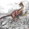 Ученые: Динозавры были покрыты перьями