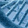 100000 генов раскроют свои тайны науке