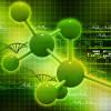 Банки ДНК и нехватка мощностей