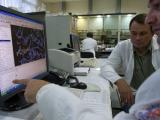Раковые заболевания могут возникнуть впоследствии нарушения белкового баланса клеток.
