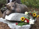 От чего умер Кнут – полярный медведь?