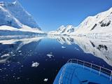 Цветущая Антарктида