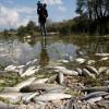 Воды Земли страдают от пластиковых отходов