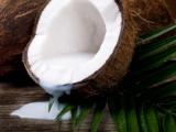 Кокос и его полезные свойства