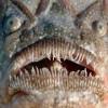 Самые жуткие существа на дне океана