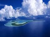 Воздействие внутренней и внешней среды на экологию океана