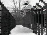 Всемирный форум памяти холокоста