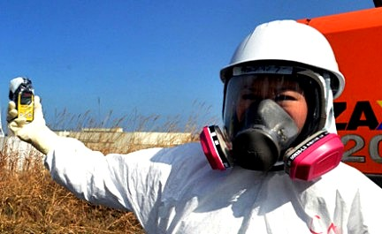 Ученые нашли способ снизить уровень радиации на Фукусиме с помощью кукурузы