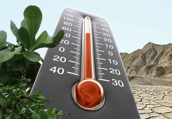 О глобальных климатических изменениях в начале XXI века