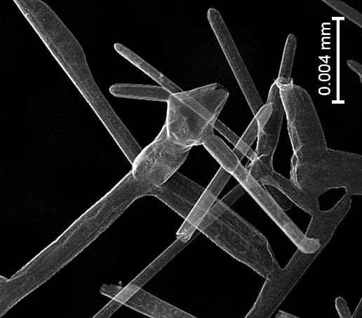 Ученые создали самый легкий материал - аэрографит