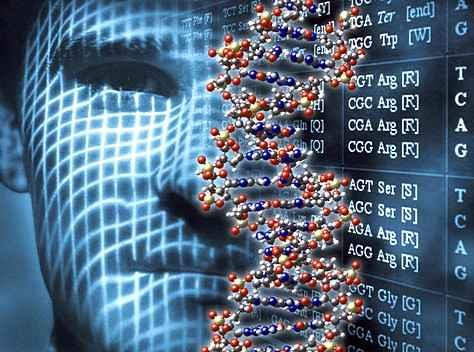 Человек - результат генетической ошибки