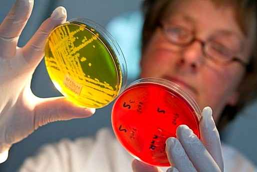Ученые обнаружили связь между кишечной инфекцией и шизофренией