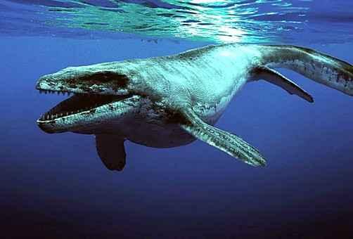 Подводного монстра обнаружили в Канзасе