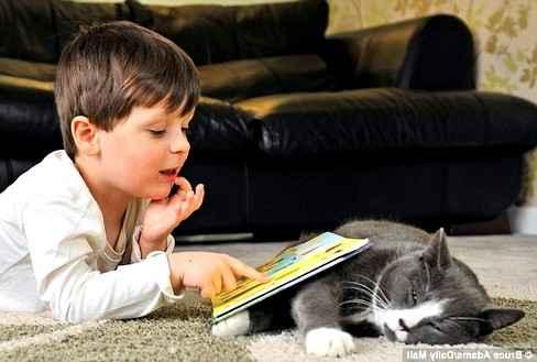 Домашние животные помогают детям с аутизмом справляться с недугом