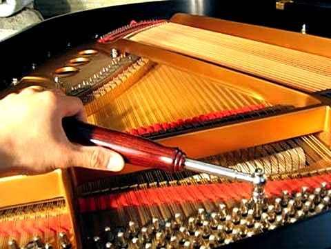 Как настройка фортепиано может приводить к изменениям мозговых структур
